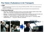 the vision turbulence in air transport