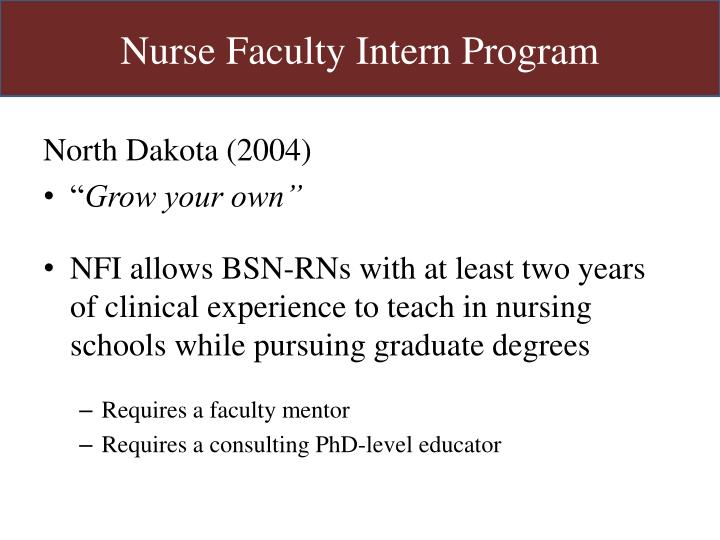 Nurse Faculty Intern Program