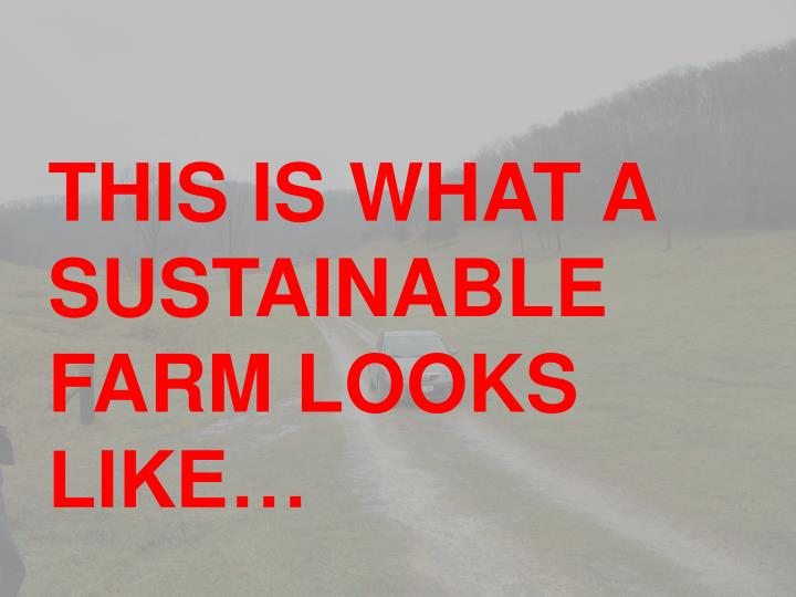 THIS IS WHAT A SUSTAINABLE FARM LOOKS LIKE…