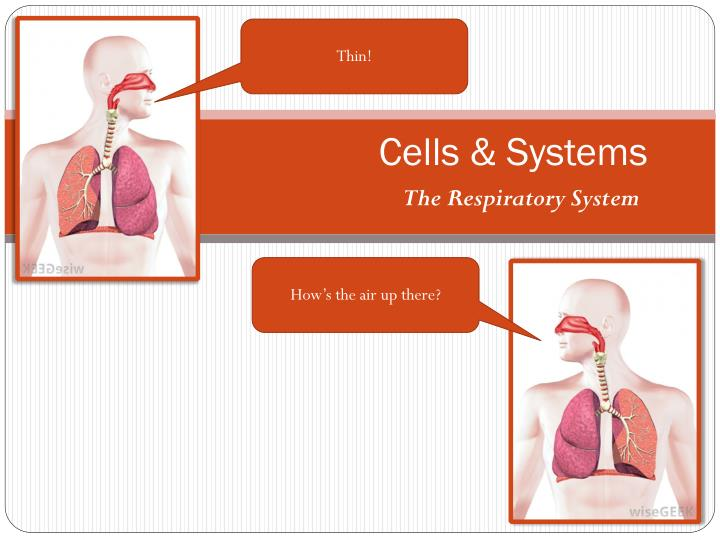 Cells systems