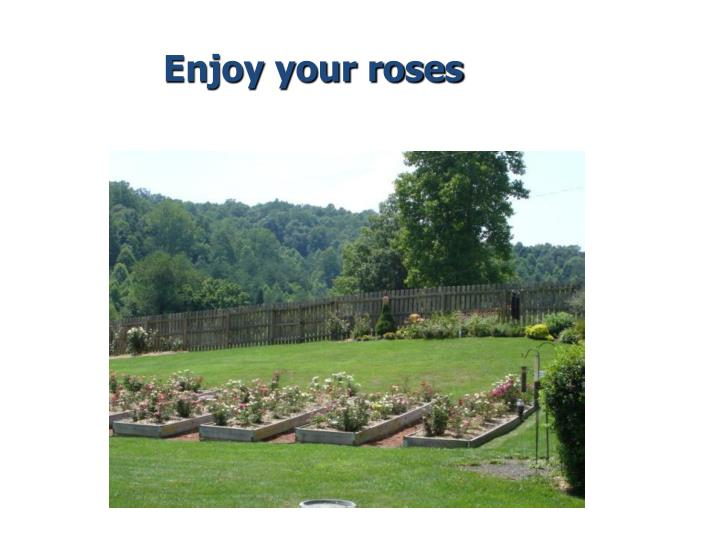 Enjoy your roses