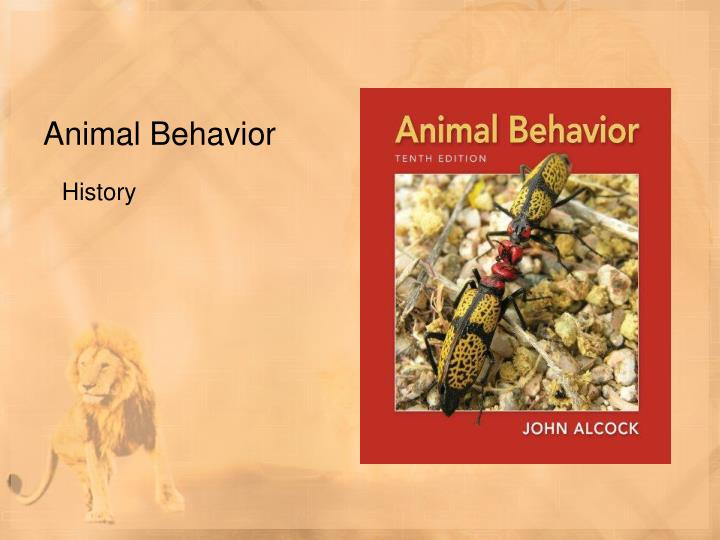 analysis of maus the animal behavioral stance essay Crozier was an advocate for animal study and measures in behavior using the functional and behaviorist background from william, skinner started to his studies on behaviorism he combined theories and methods from physiology and psychology where he developed various ways of data recording and analyzing.