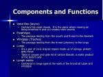 components and functions2