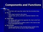components and functions4