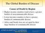 the global burden of disease1