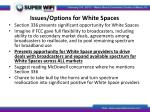 issues options for white spaces3