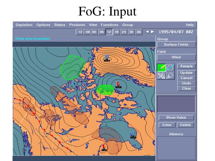 Fog input