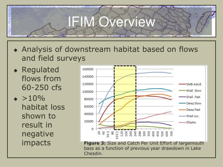 IFIM Overview