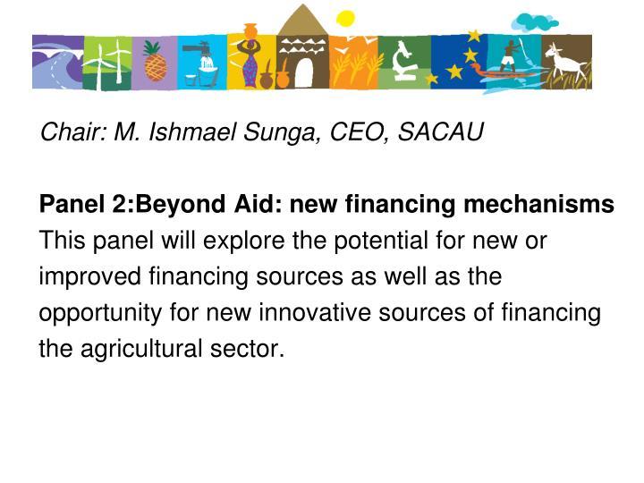 Chair: M. Ishmael Sunga, CEO, SACAU