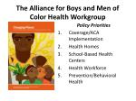 the alliance for boys and men of color health workgroup1