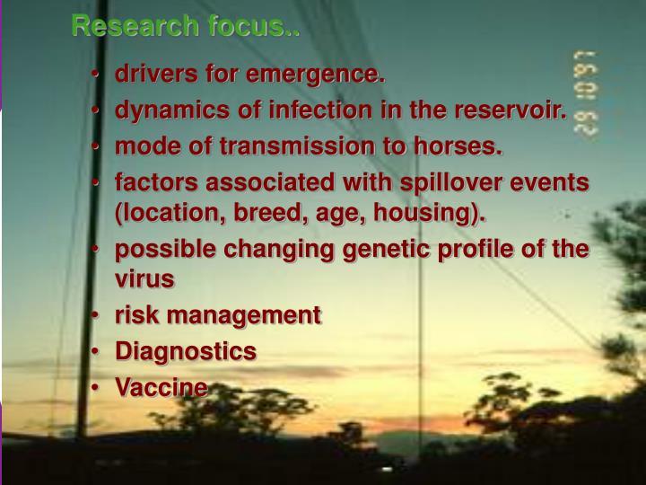 Research focus..