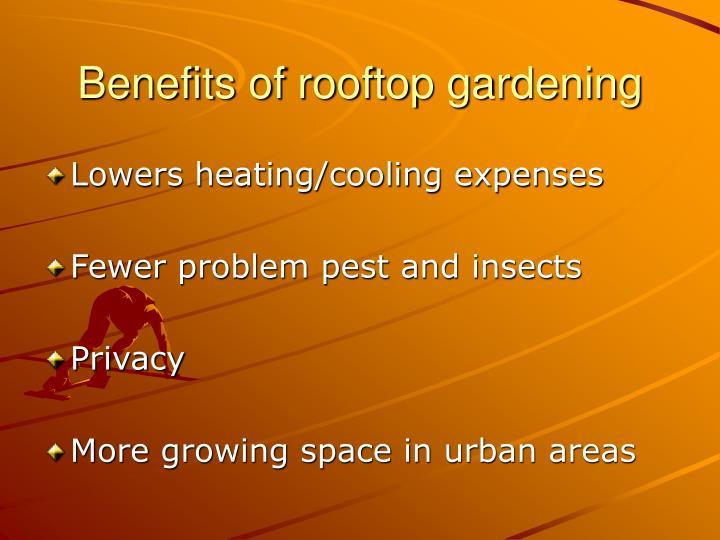 Benefits of rooftop gardening