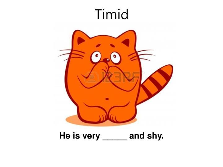 Timid