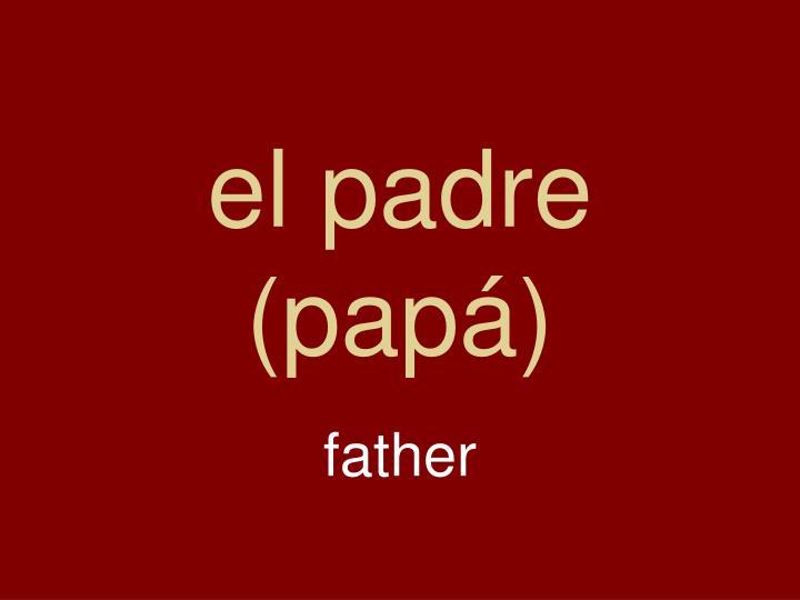 el padre (papá)