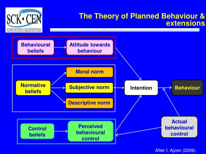 The theory of planned behaviour extensions
