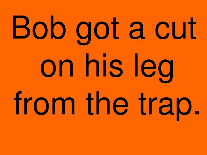 Bob got a cut on his leg from the trap.