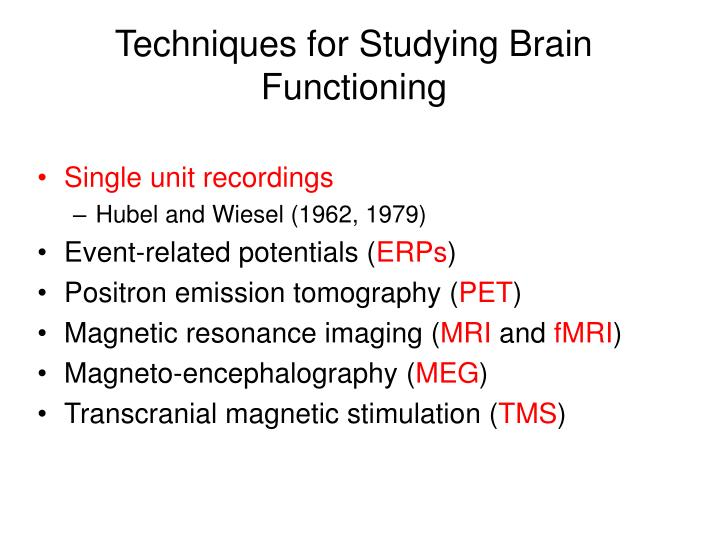 Techniques for Studying Brain Functioning