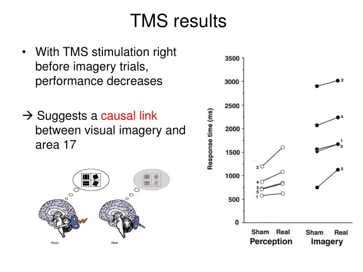 With TMS stimulation right before imagery trials, performance decreases