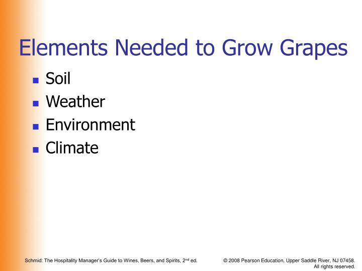 Elements Needed to Grow Grapes