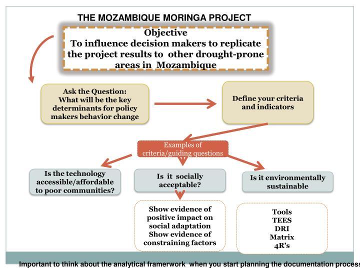 THE MOZAMBIQUE MORINGA PROJECT