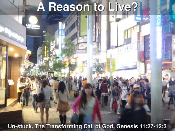 A Reason to Live?