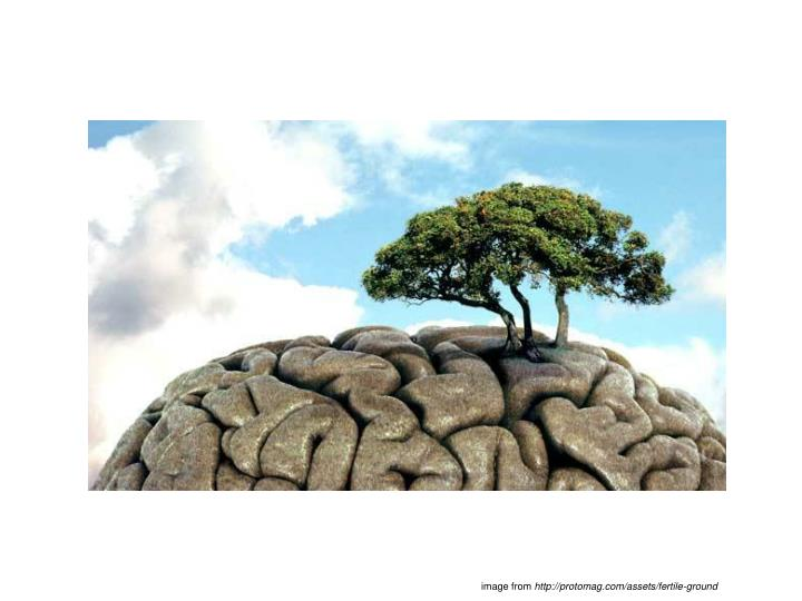 Image from http protomag com assets fertile ground