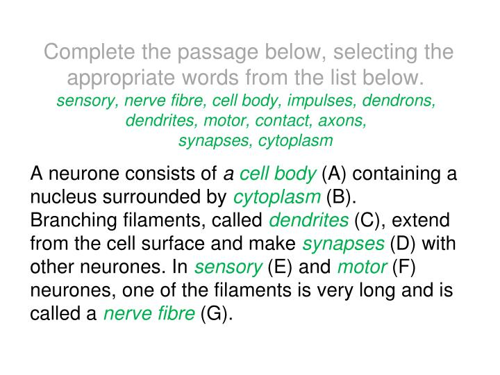 Complete the passage below, selecting the appropriate words from the list below.