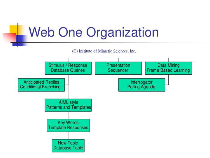 Web One Organization