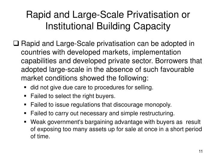 Rapid and Large-Scale Privatisation or Institutional Building Capacity