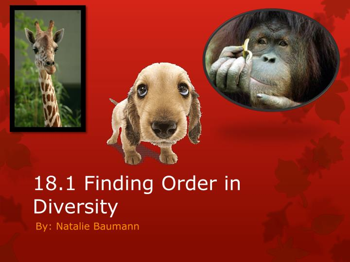 PPT - 18.1 Finding Order in Diversity PowerPoint ...