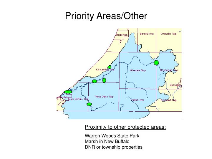 Priority Areas/Other
