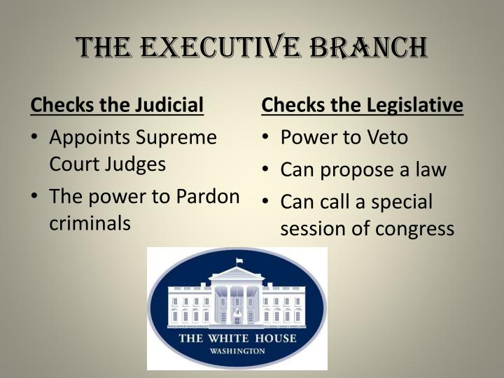 relationship among the judiciary the executive Suggested activities students explore the functioning of the executive, legislative and judicial branches of the federal government by creating an illustrated concept map explaining the roles, relationships and tensions between these branches.