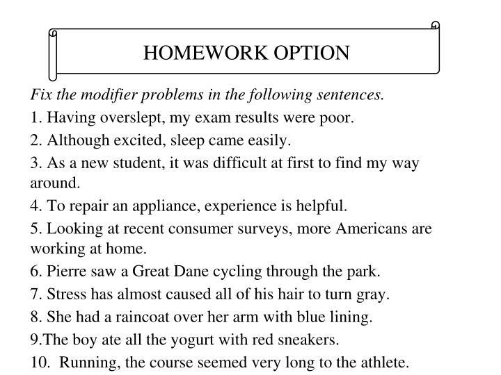 HOMEWORK OPTION