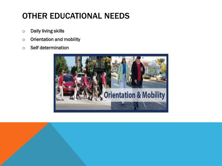 Other educational needs