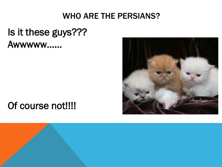 Who are the persians