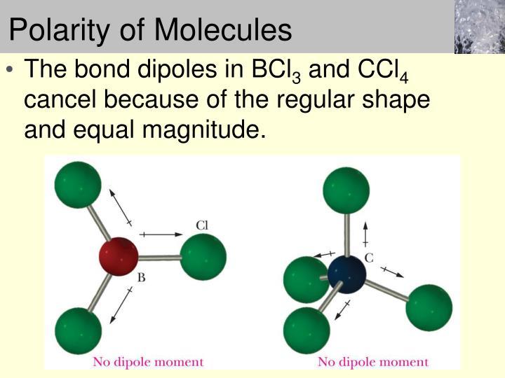 Polarity of Molecules