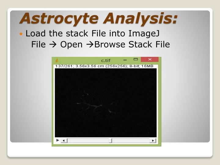 Astrocyte analysis