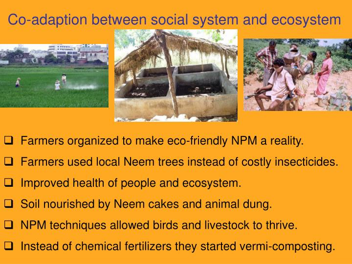 Co-adaption between social system and ecosystem