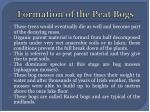formation of the peat bogs1