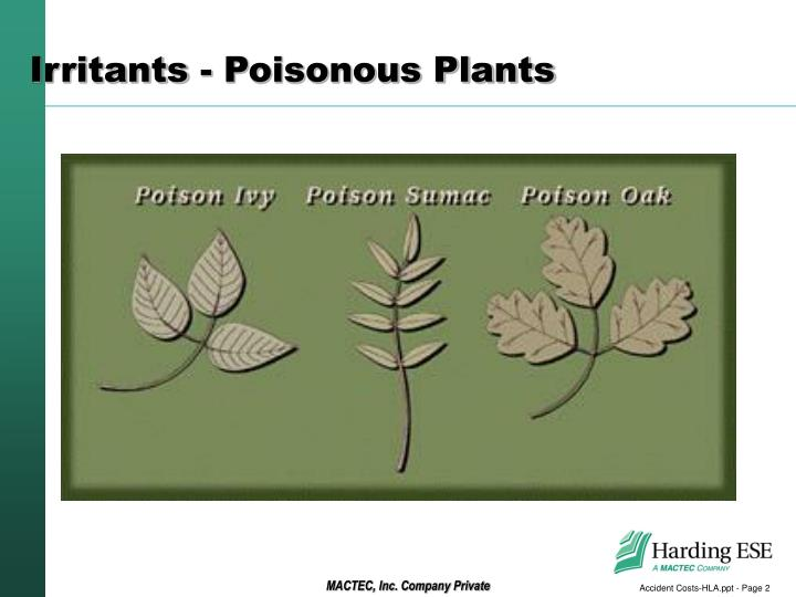 Irritants poisonous plants