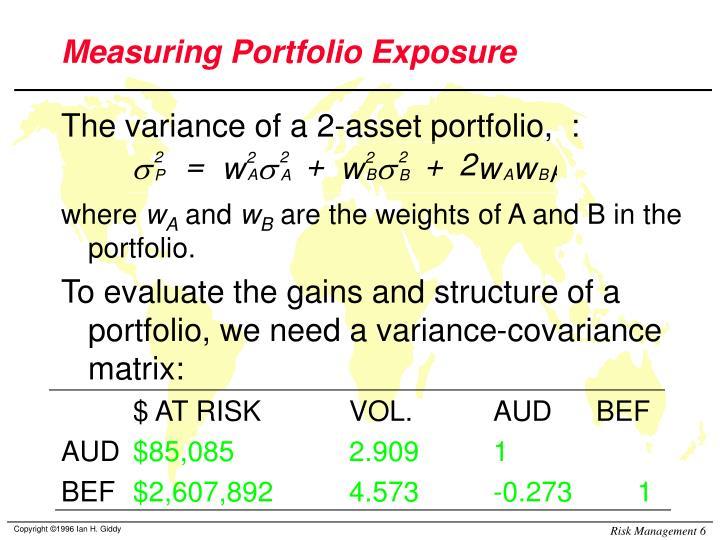 Measuring Portfolio Exposure