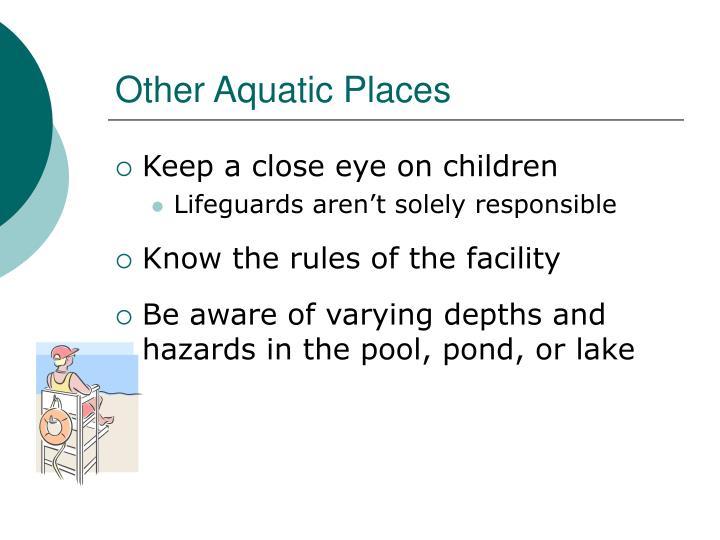 Other Aquatic Places