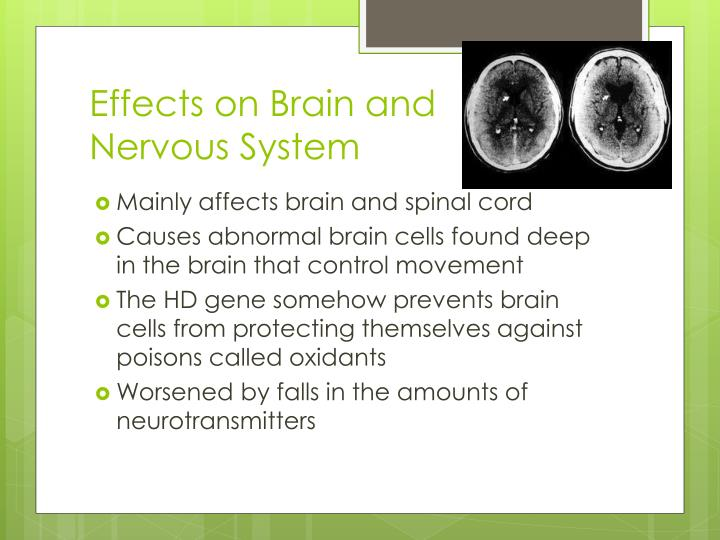 Effects on Brain and