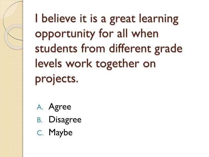 I believe it is a great learning opportunity for all when students from different grade levels work together on projects.