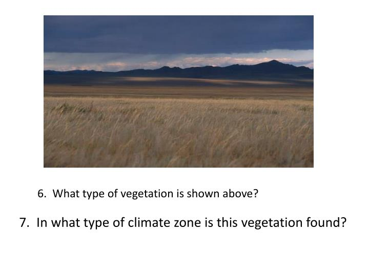 6.  What type of vegetation is shown above?
