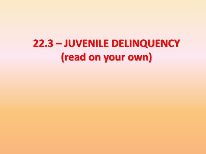 22.3 – JUVENILE DELINQUENCY