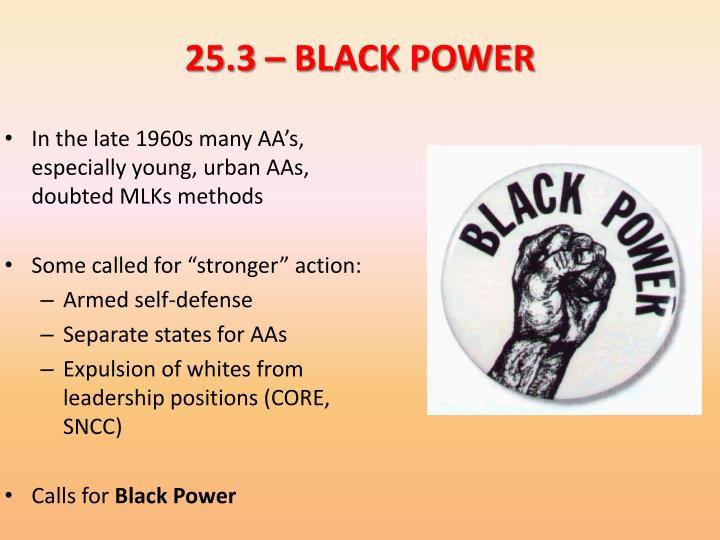 25.3 – BLACK POWER