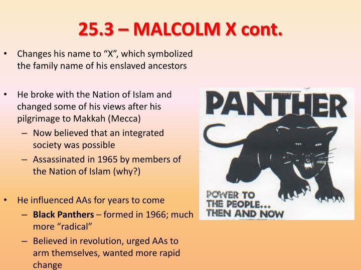 25.3 – MALCOLM X cont.