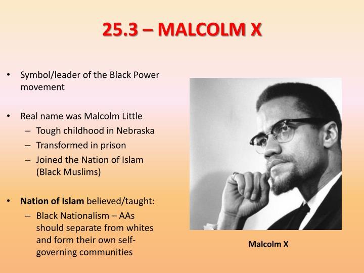 25.3 – MALCOLM X