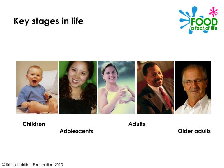 Key stages in life